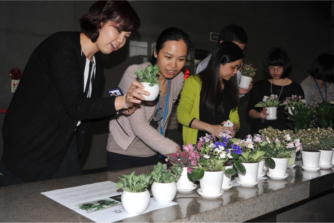 Green Activities Held on the National Tree Planting Day